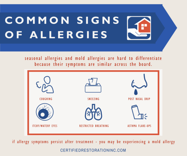 COMMON SIGNS OF ALLERGIES 2 600x503 - Backyard BBQ Safety Tips