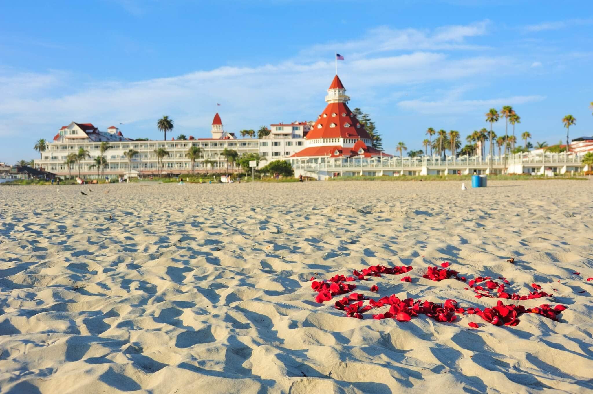 rose petals on beach in Coronado, CA