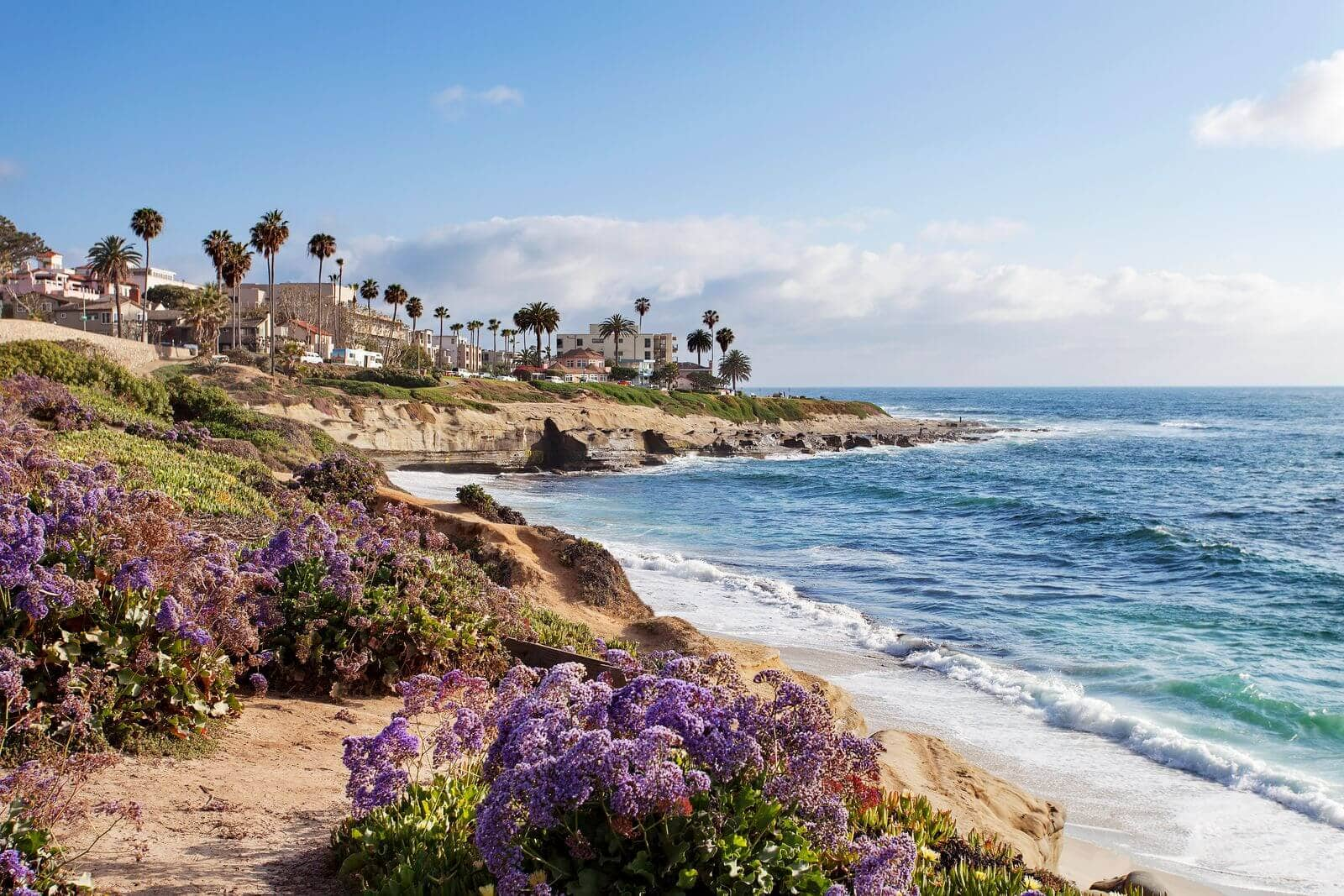 flood restoration and flood cleanup services in la jolla, ca